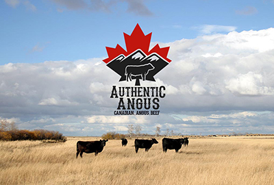 Authentic Angus